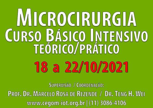 18 a 22 de Outubro - Curso Básico Intensivo de Microcirurgia