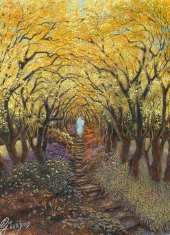 Fall Woodland Path