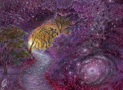 PATH INTO THE UNIVERSE