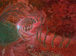 RED PATH THROUGH THE WOODS_
