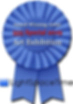 555 Special 2019 Award Ribbon.jpg