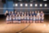 Volleyball Team Photo 2018.jpg