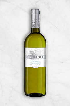 Terre Forti - Pinot Grigio.png