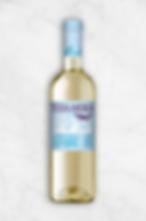 Terra Andina Lifestyle - Sauvignon Blanc
