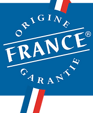 logo OFG.png