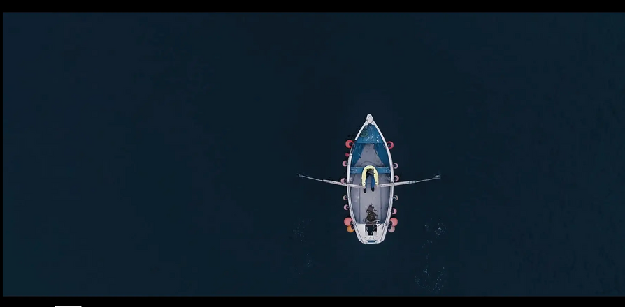 Sea to Plate - Branded Video Colour Grading