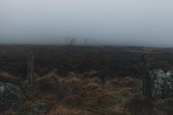 Foggy Scotland.jpg