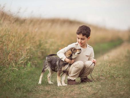 Perros y niños en una misma familia.
