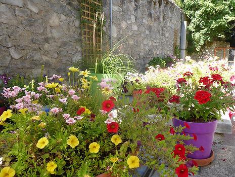 la terrasse fleurie 2.JPG