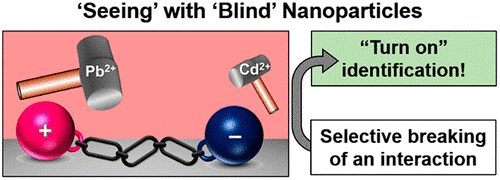 Turn-On Selectivity in Inherently Nonselective Gold Nanoparticles for Pb2+ Detection by Preferential Breaking of Interparticle Interactions