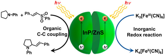 InP/ZnS Quantum Dots as Efficient Visible-Light Photocatalysts for Redox and Carbon–Carbon Coupling Reactions