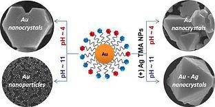 PP nanoscale.jpg