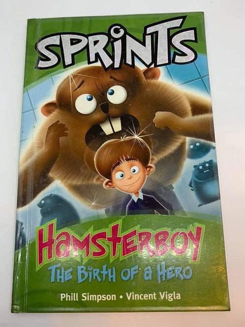 Hamstrerboy The Birth Of A Hero (Sprints) Level 17/18