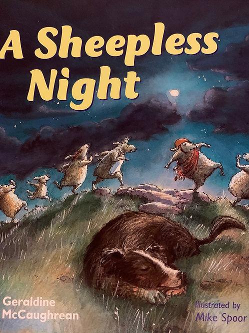 A Sleepless Night Level 22 (MacMillan Take Home)