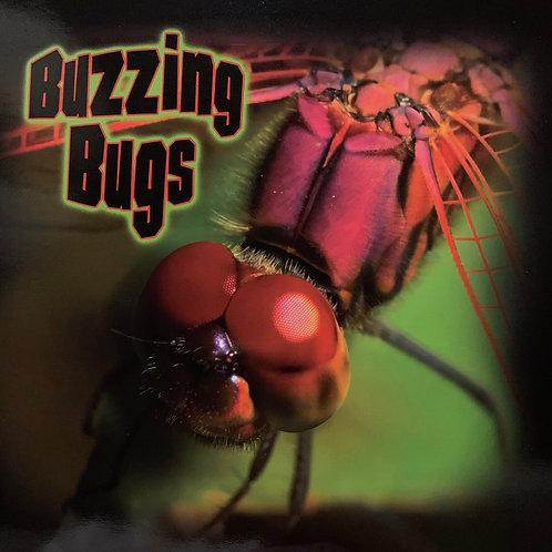Buzzing Bugs Level 26 (MacMillan Take Home)