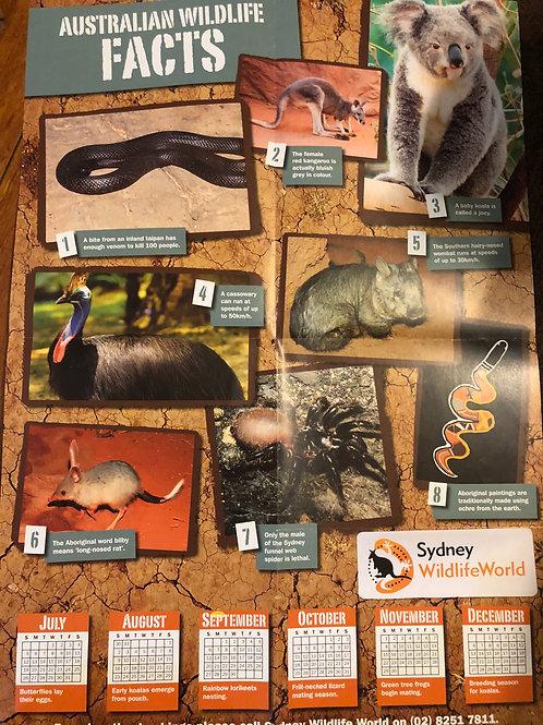 Australian Animals Facts Folded Poster