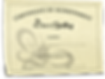 AAS-L3-Certificate-of-Achievement-450x33