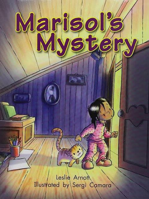 Marisol's Mystery Level 14