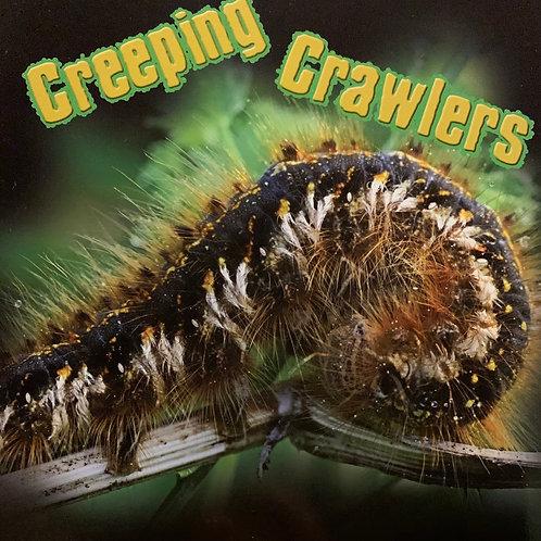 Creeping Crawlers Level 25 (MacMillan Take Home)