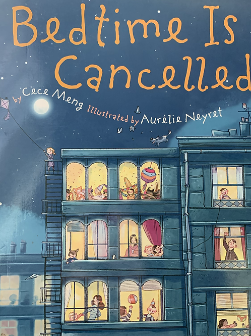 Bedtime Cancelled Level 9 (Springboard Connect) Larger Book