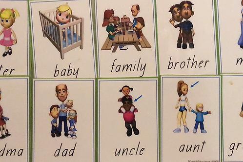 Family Flashcards Laminated