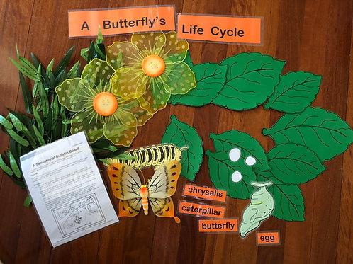 Butterfly Bulletin Board Display