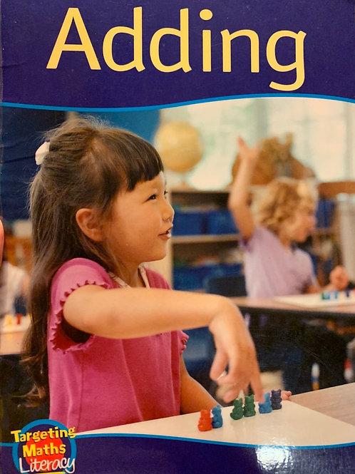 Adding Level 3 (Targeting Maths Literacy)