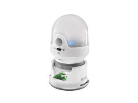 Digital Microscope – Wireless – USB