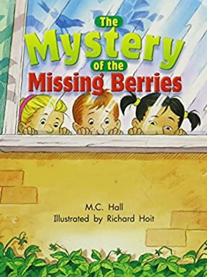 The Mystery of the Missing Berries Level 17
