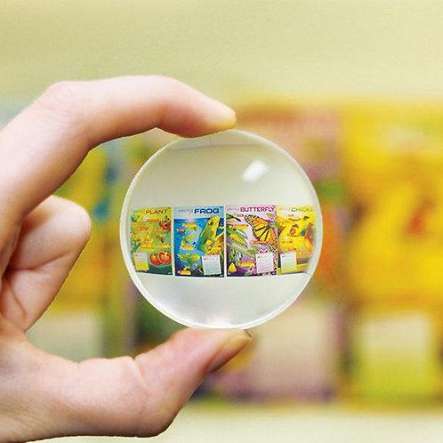Lens - Double Concave 5cm dia., 10cm $5.95