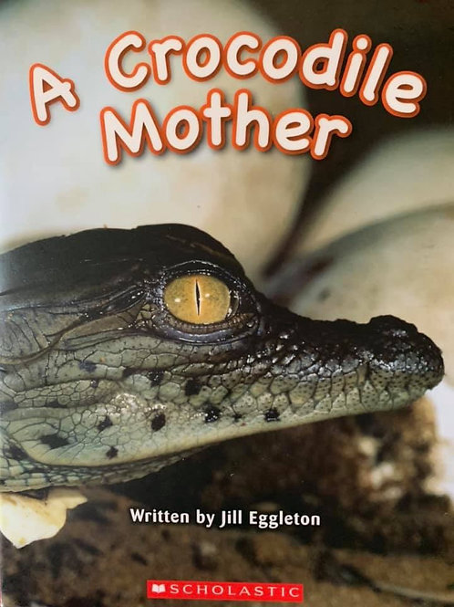 A Crocodile Mother (Scholastic) Level 4