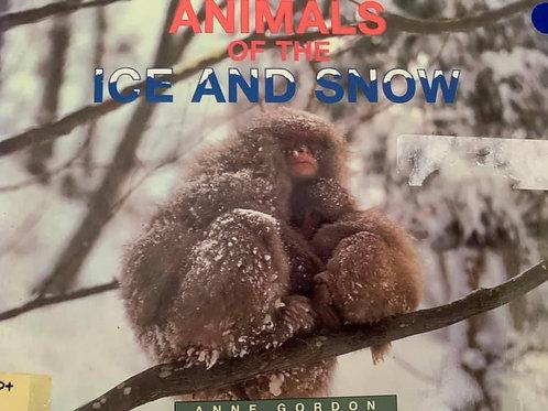 Animals of the Ice & Snow Level 30+ (Literacy Links)