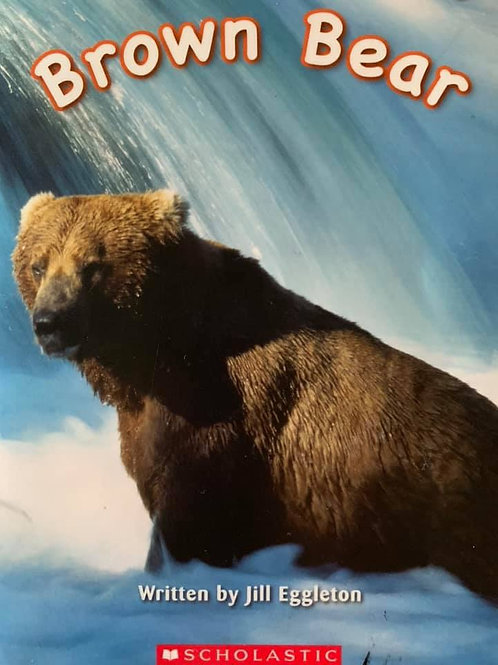 Brown Bear (Scholastic) Level 4