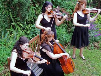String Quartet, String Trio, Classical Music