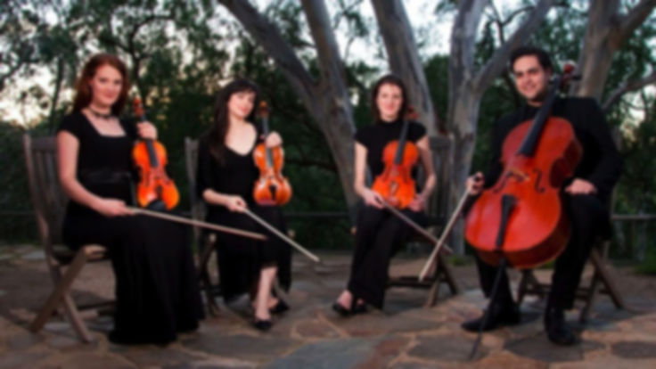 String Quartet, String Trio, String Ensemble