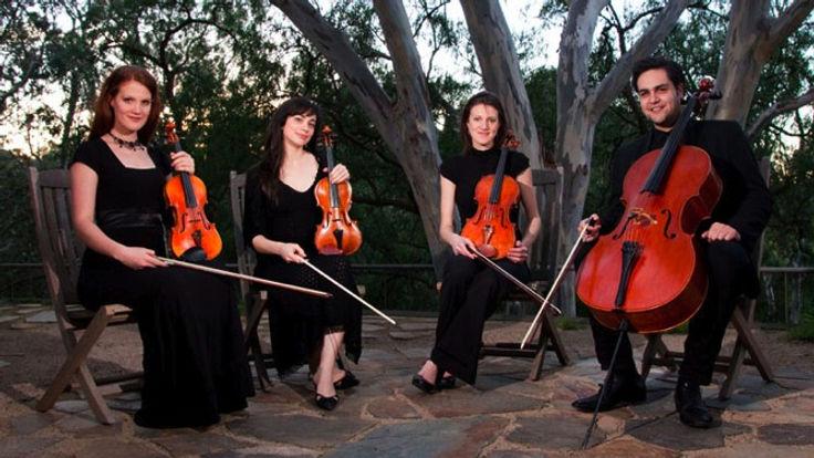 String Quartet, String Trio, String Ensemble
