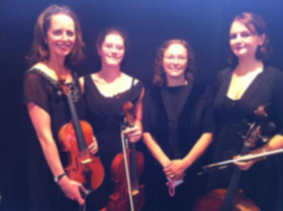 String Quartet, String Trio, Classical Ensemble