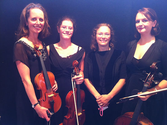 String Quartet, String Trio, Classical Ensemble