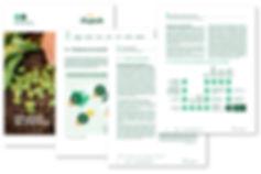 Bonduelle DDR 216 pages