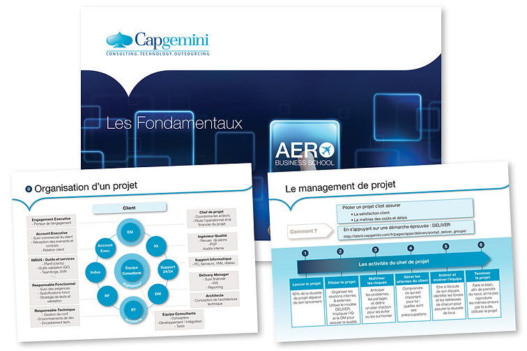 Capgemini Leaflet A5 36 pages