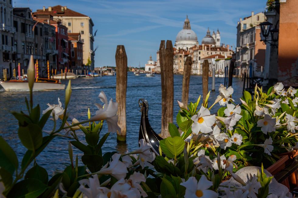 venezia-38.jpg
