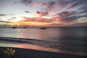 Barceló Aruba - Palm Beach