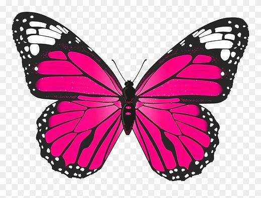 6-65608_butterfly-clip-art-pink-butterfl