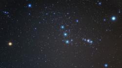 Orion Beauty