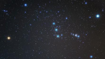 Orion Beauty.jpg