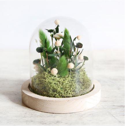 Globe jardin zen /// ORIGINE