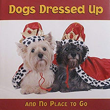 Dogs Dressed Up.jpg