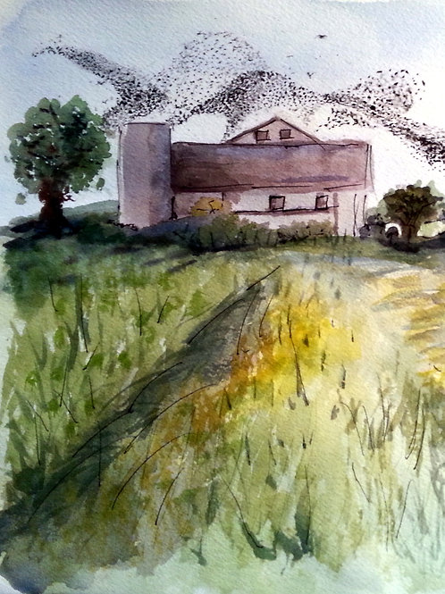 Starlings Over the Barn