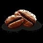 coffee bean 2.png