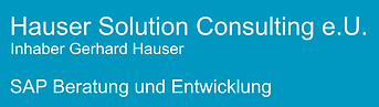 Banner Hauser Solution Consulting.png